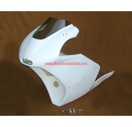 Carena anteriore stradale speciale Tyga Performance per Suzuki RGV gamma 250 vj22 89-96