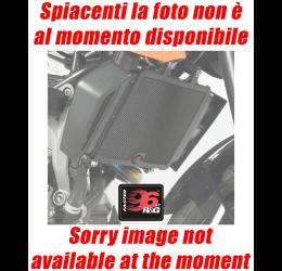 Griglia protezione testa cilindro Faster96 by RG per Ducati Multistrada 950 / S 17-20 in alluminio
